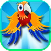 Bouncy Brazil Birds - Rio to Amazon Adventure Game by Lorraine Krueger
