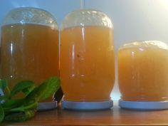 Müjde'nin Mutfağı: Şeyda'nın limon marmelatı