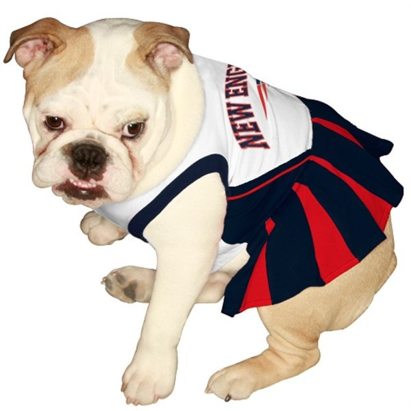 New England Patriots Pet Cheerleader Outfit More