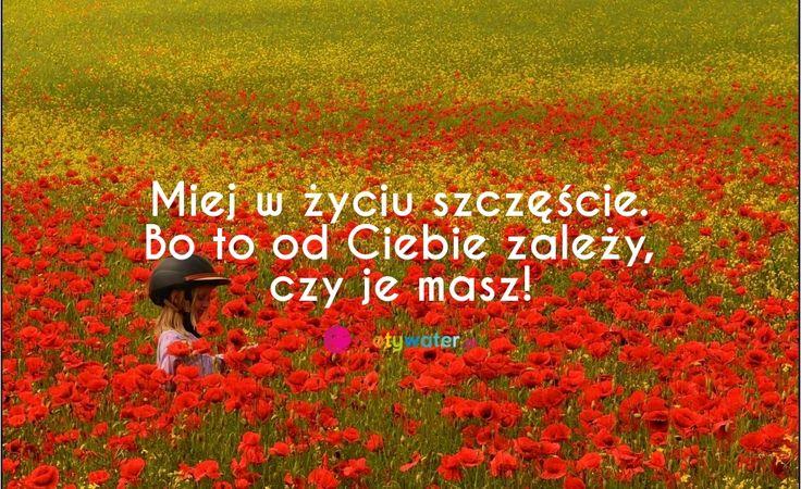 Miej w życiu szczęście. Bo to od Ciebie zależy, czy je masz!   http://motywater.pl/img/524/miej-w-zyciu-szczescie-bo-to-od-ciebie-zalezy-c/