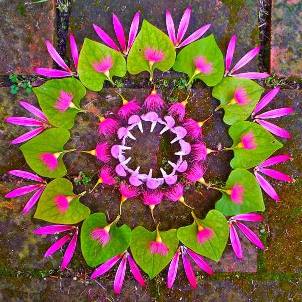 """Arizona-based artist Kathy Klein creates gorgeous flower circles which she calls """"danmalas"""" and then leaves them where they were created as a gift to whoever discovers them"""