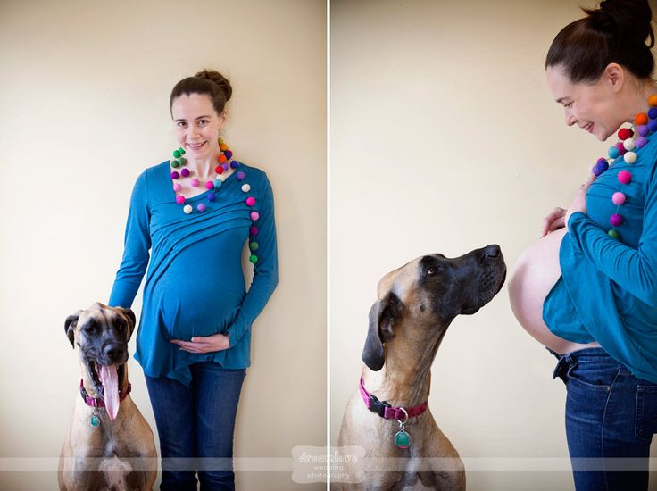 Maternity photos with our dog, Zelda the great dane. These were a few of my favorites from the pictures Max took. ;)