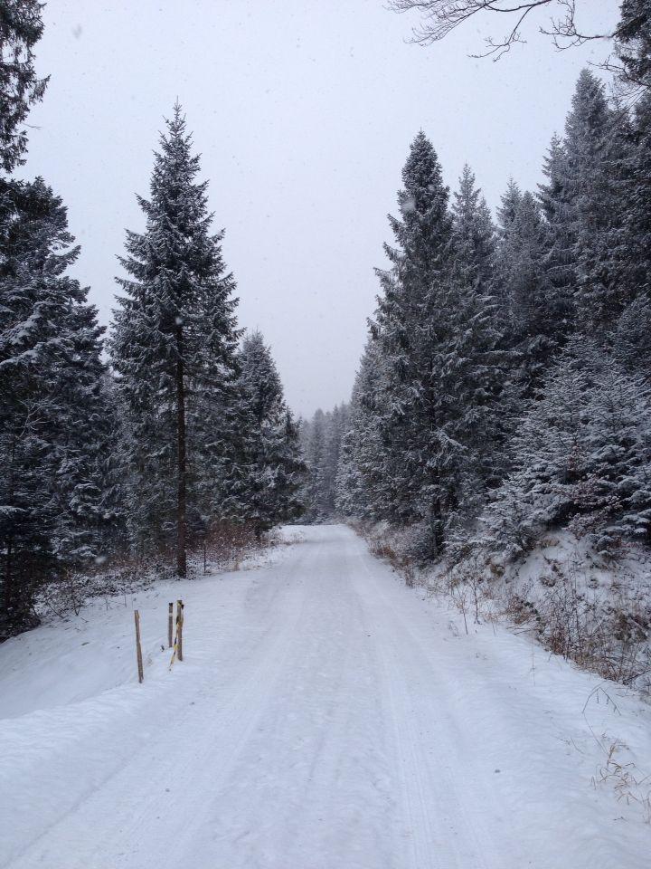 Muczne Winter Bieszczady Poland