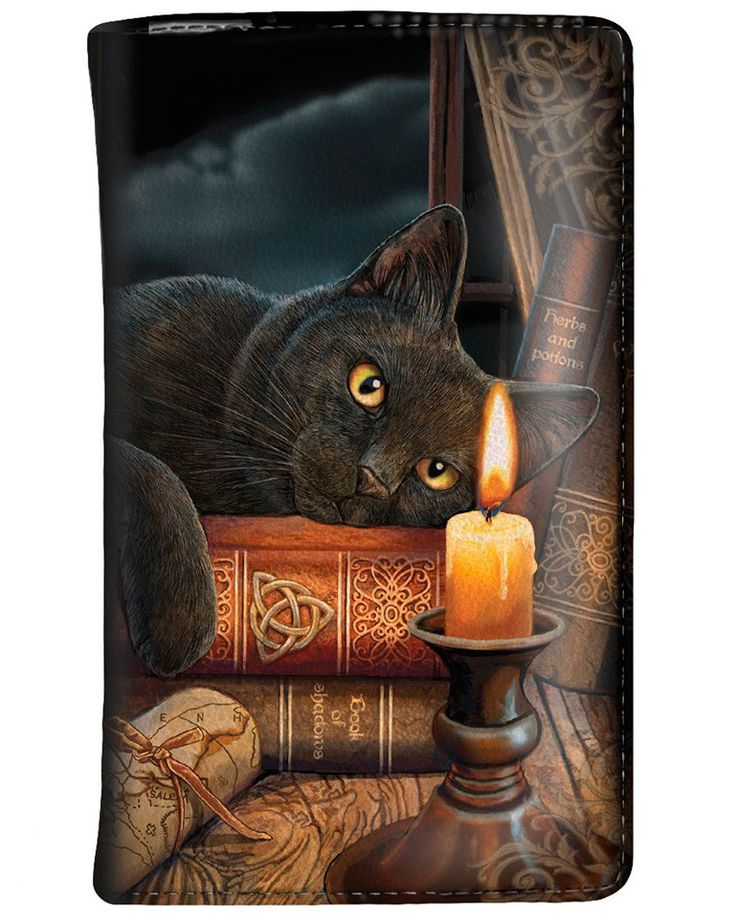 Monedero Witching Hour de Lisa Parker #gato #negro #black #cat #wallet #billetera #xtremonline