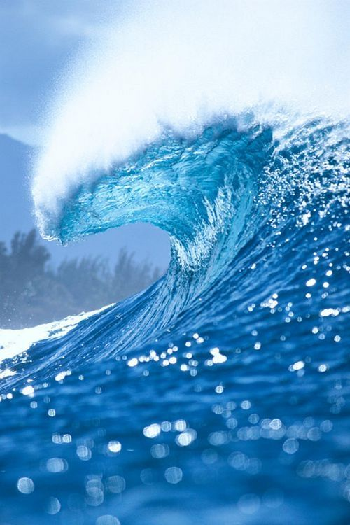 Life is ever changing, ever revolving. Catch the wave and come along for the ride.