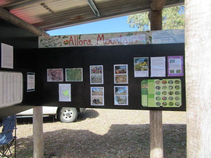 Allora Nature Reserve sign