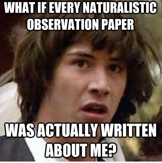 psychology naturalistic observation essay Developmental psychology  naturalistic observation  write up a two to three page description of your observation include.