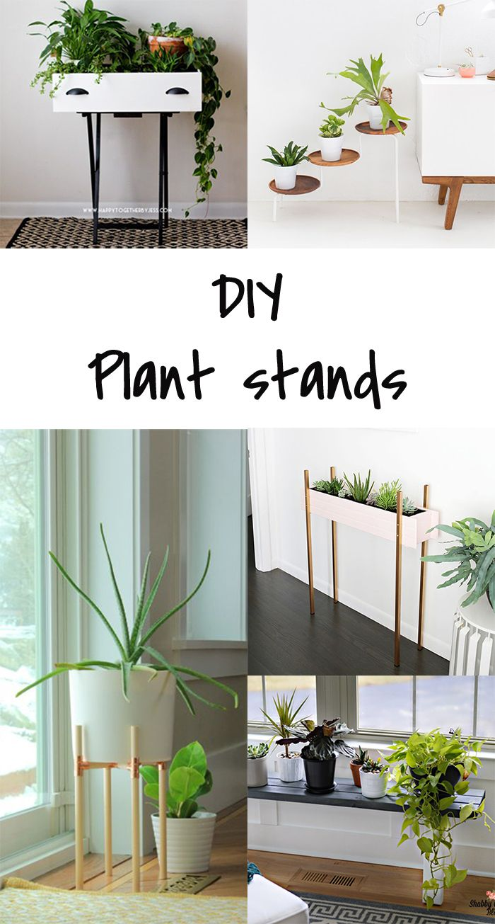 5 Diy To Try Plant Stand Crafts Plant Stands And Blog 400 x 300