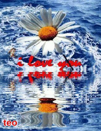 Σ'αγαπω ....πιο πολυ....απο ποτε.!!!!!!