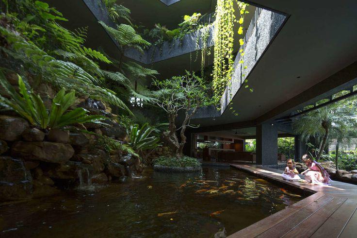 Тропический рай в Сингапуре — HQROOM