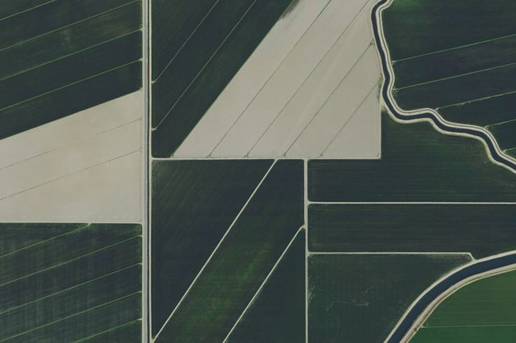 California Fields, United States