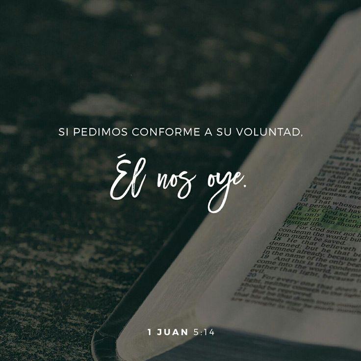 Y ésta es la confianza que tenemos en él, que si pedimos alguna cosa conforme a su voluntad, él nos oye. Y si sabemos que él nos oye en cualquiera cosa que pidamos, sabemos que tenemos las peticiones que le hayamos hecho. 1 Juan 5:14-15