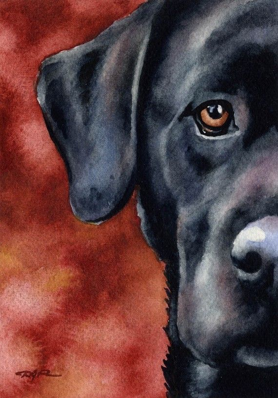 BLACK LAB Dog Signed Art Print by Artist DJ Rogers❤️