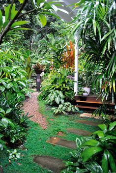 outdoor living tropical tabu - Garden Ideas Qld
