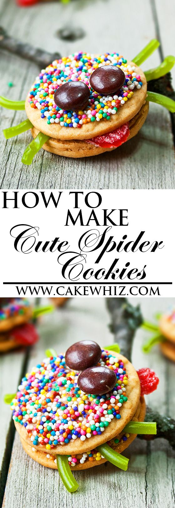 Learn how to make fun HALLOWEEN SPIDER COOKIES, using this video tutorial. Easy…