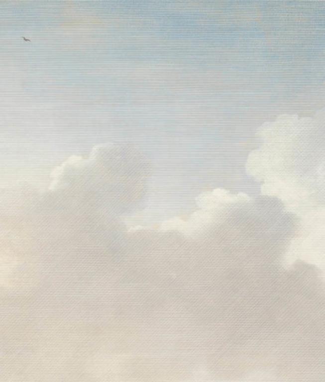 67 best eijffinger wallpaper masterpiece range images on for Cloud mural wallpaper