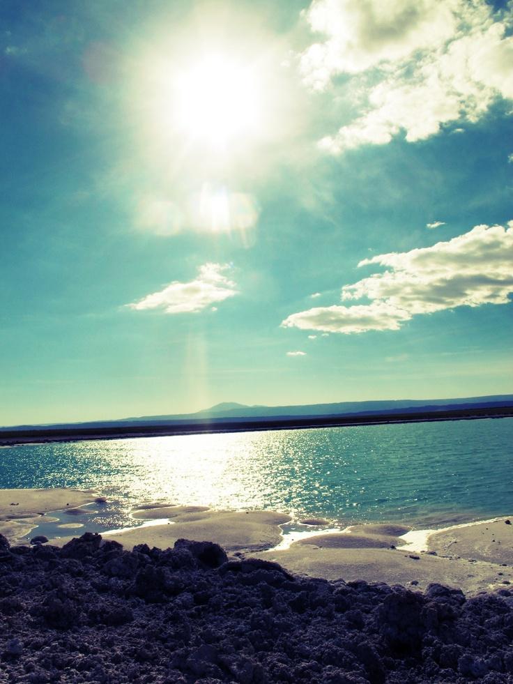 Laguna Cejar.........