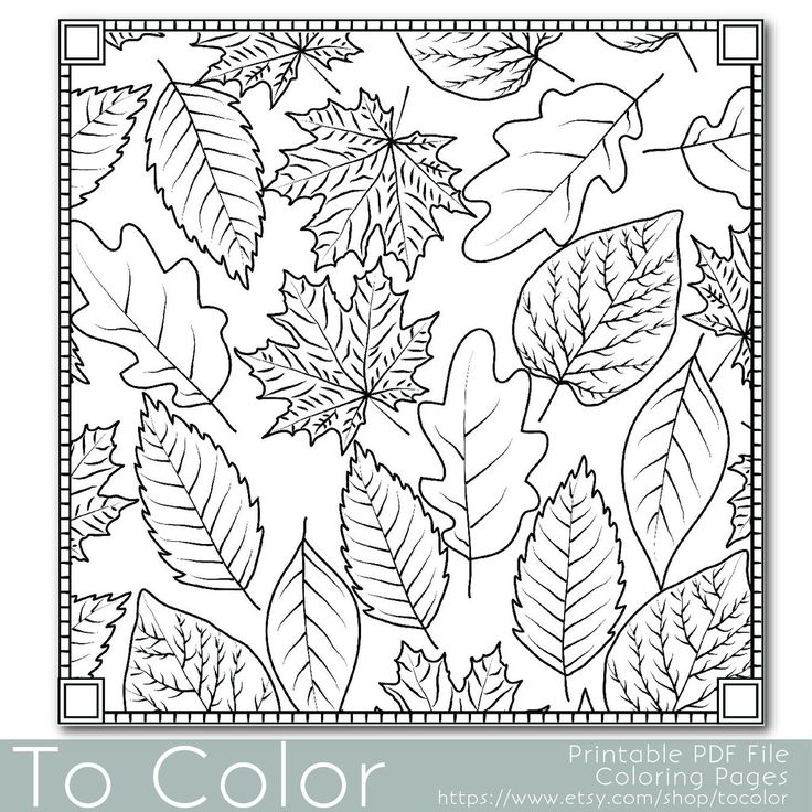335 best Coloring Pages Autumn