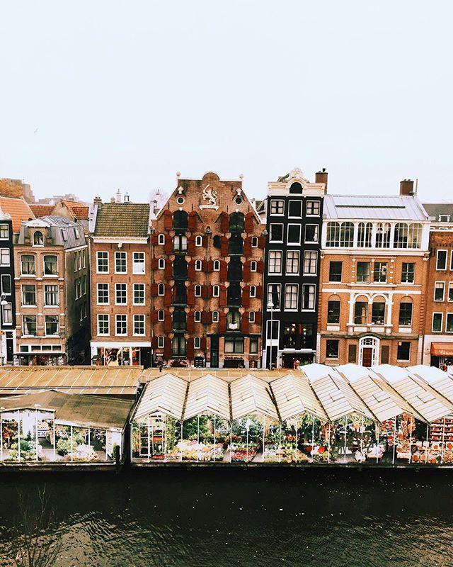 Amsterdam. Bloemenmarkt.