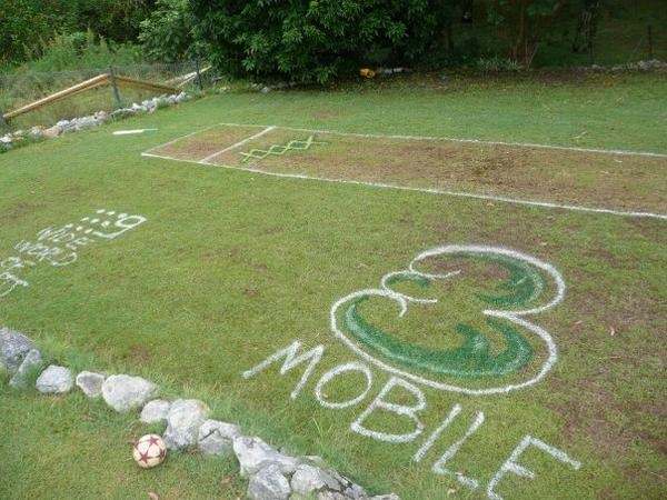 Backyard cricket pitch - spray painted in  celebration for Australia Day
