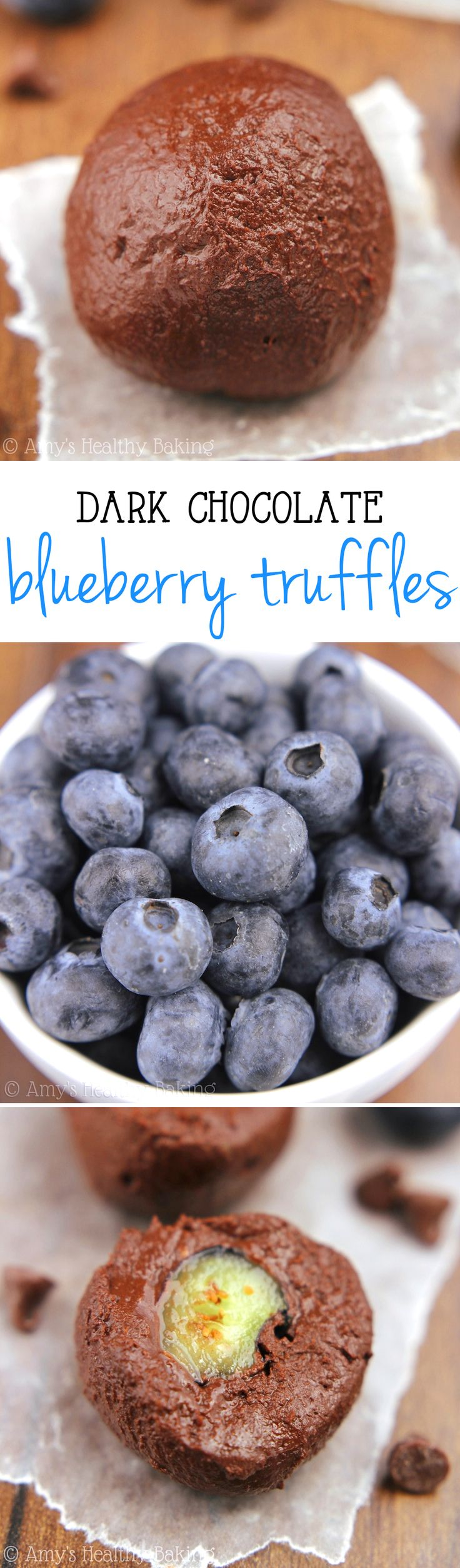 Dark Chocolate Blueberry Truffles -- SO rich & addictive! Just 5 healthy ingredients & 28 calories!