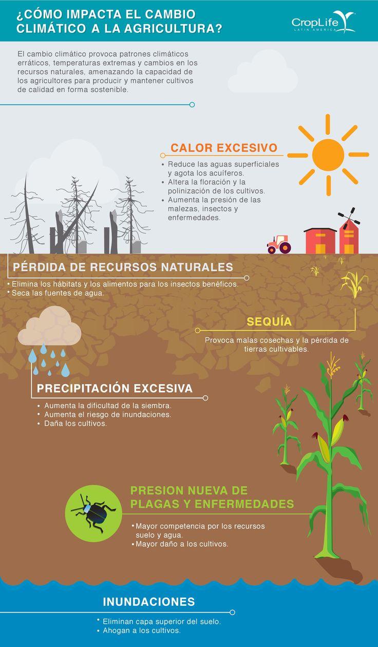 Especial infografías Cambio Climático / CropLife Latin America ...
