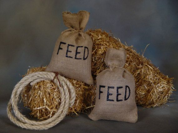 Country Western    Burlap Feed sacks & Lasso  by RockinRphotoprops