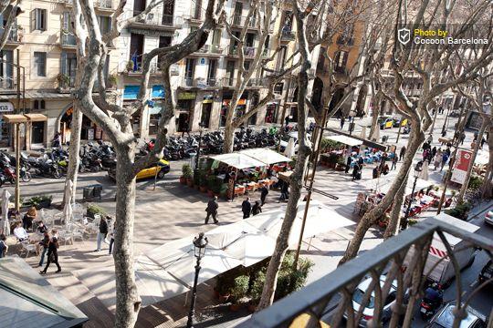 COCOON BARCELONE APPARTEMENTS - Appartement moderne situé sur la célèbre RAMBLA, à 20m du célèbre opéra de Barcelone: le LICEU. Chambre double + sofa lit 2P (living). Edifice restauré, ascenseur. Tout proche, marché couvert la Boqueria (produits frais). Location idéale pour découvrir Barcelone! Bon rapport qualité/prix.
