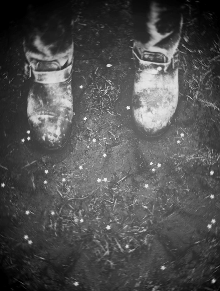 'and the rest is rust and stardust.' - vladimir nabokov | © hannah lemholt photography