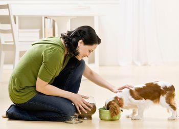 Great home made healthy dog food recipes