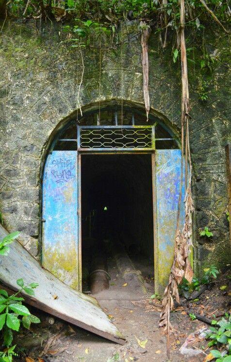 Diretion la cascade de didier. Martinique