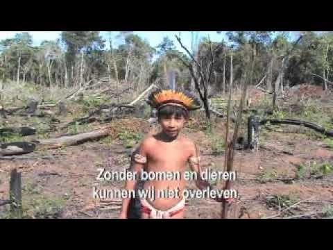 YouTube: kinderen en klimaatverandering