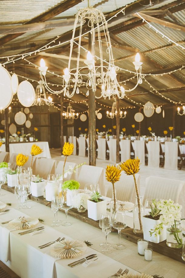 Kallie Ansu S Modern Organic South African Wedding With Yellow Painted Proteas By Blackframe Photography 89