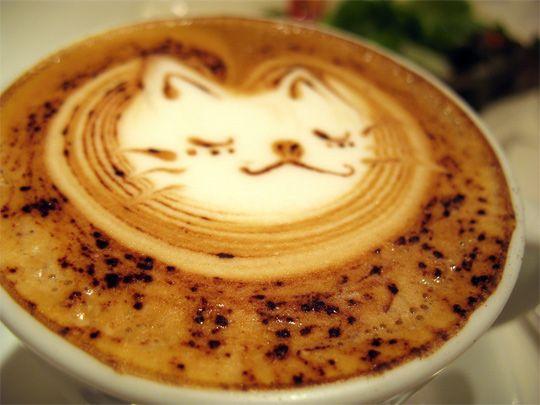 cappuccino/latte froth art: Cat Art, Latte Art, Coffeeart, Cat Meow, Coffee Art, Crazy Cat Lady, Art Pictures, Memorial Art, Latteart