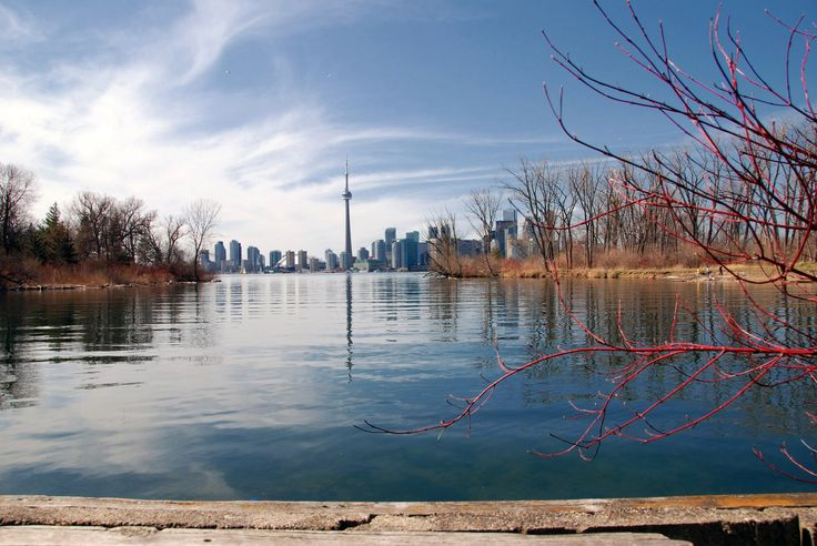 View from the cut, between Snake Island and Algonquin Island of Toronto Islands.