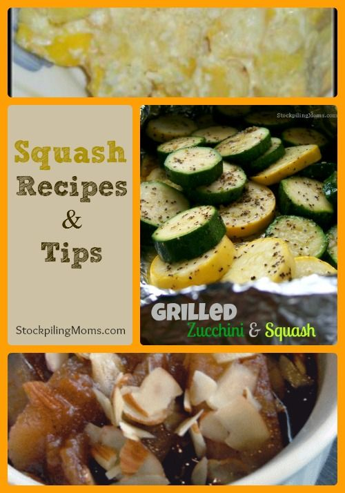 Are you swimming in squash?  Here are 10 Squash Recipes and How to Freeze Squash too!