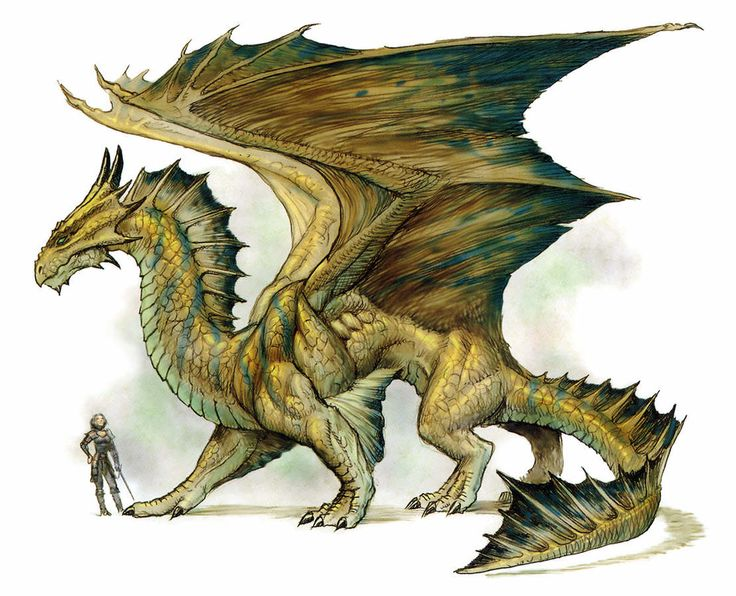 Год по восточному календарю принадлежит дракону.
