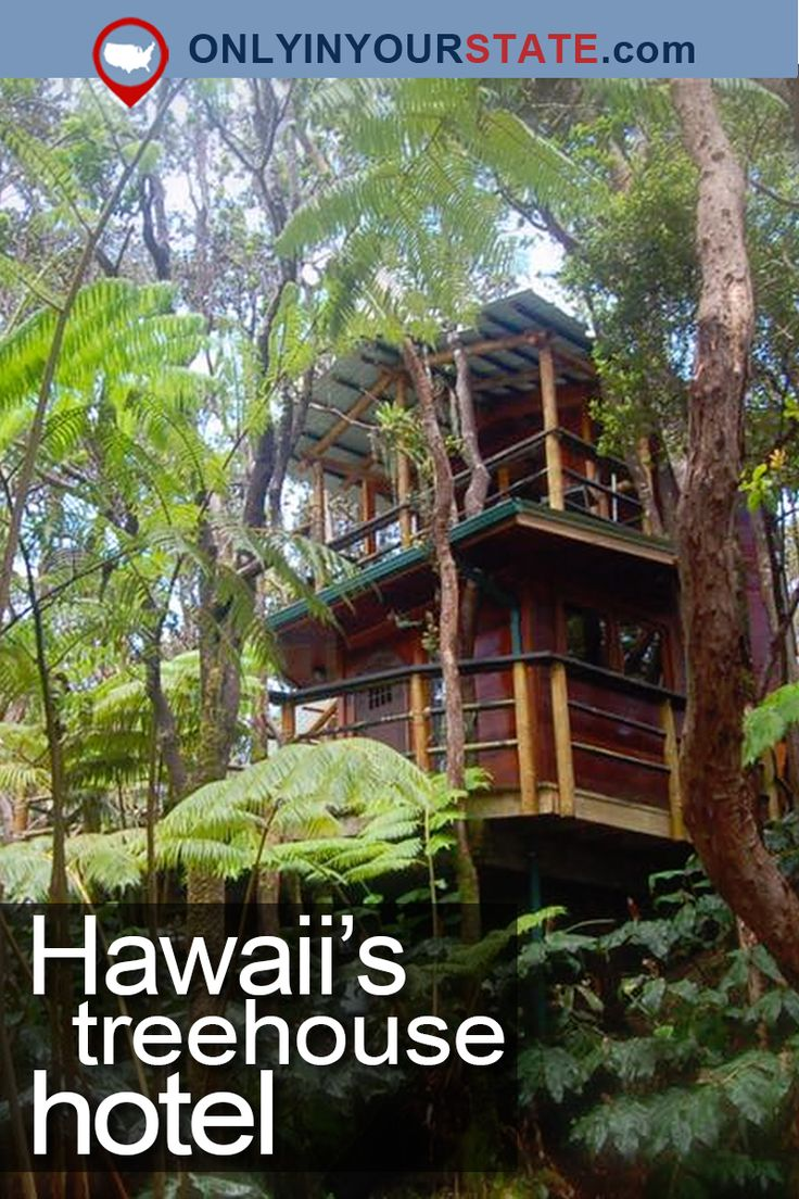 Travel | Hawaii | Treehouse | Hotel | Unique | Overnight | Accommodation
