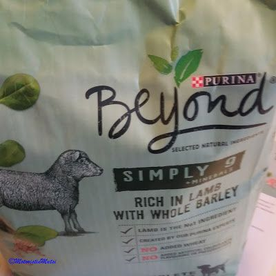 Motoristin Mutsi at home and garden: The Dog tests: Beyond Simply 9 #hopottajat #purina #beyondsimply9