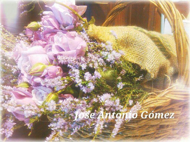 Recogiendo flores...