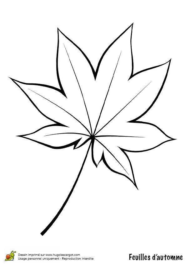Coloriage / dessin feuilles automne vigne