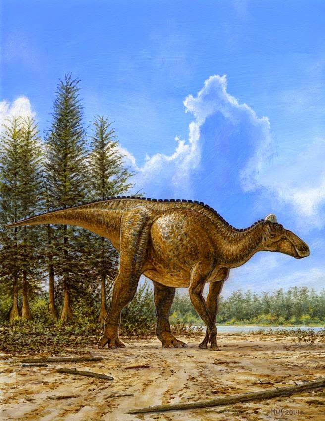 An adult Edmontosaurus walks across a floodplain in Cretaceous Canada. Art by Michael Skrepnick.