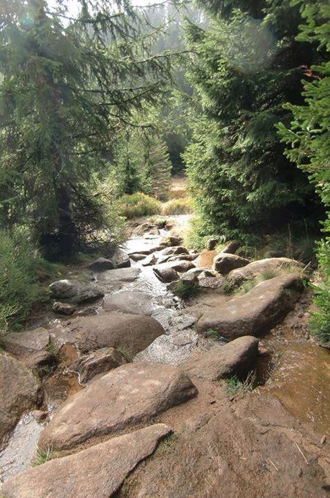 Brocken (mountain) in the Harz area, Germany