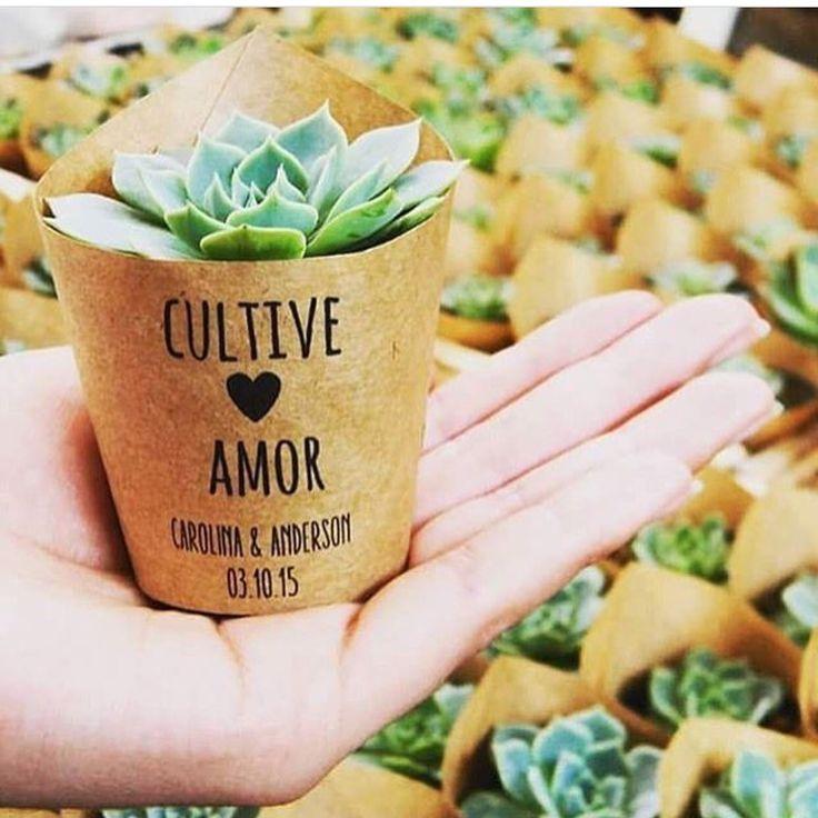 {#lembrancinha} Adoramos suculentas como lembrancinhas! 😍Para cultivar o amor! ❤️ 📷 Little Garden