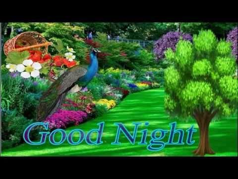 GOOD NIGHT Video - Whatsapp Video,Wishes Video,Greetings