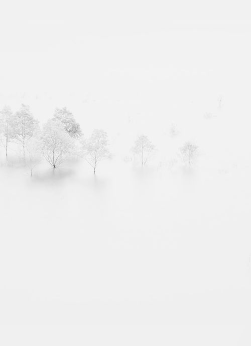 I'm dreaming of a White Christmas Just like the ones I used to know (Winter White by Makoto Shukawa) @southcoastplaza