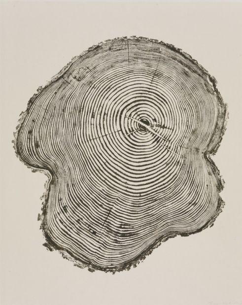 DIY tree trunk print
