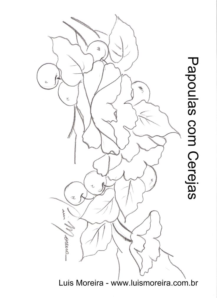 papoulas com cerejas.jpg (1700×2338)