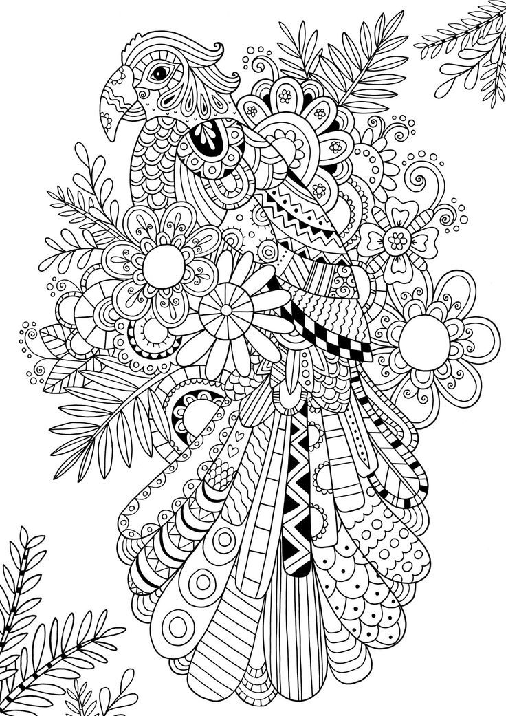 Best images about coloring pages drawing on pinterest