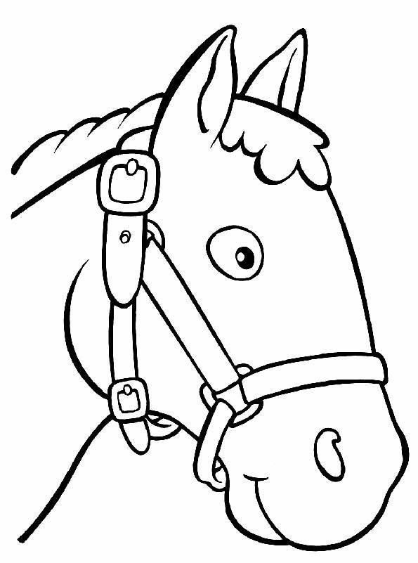 Картинки морда лошади на палку